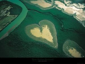 Coeur de Voh by Yann Arthus-Bertrand