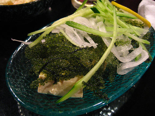 Caulerpa lentillifera is a species of edible seaweed that resembles caviar. Image via Wikipedia.