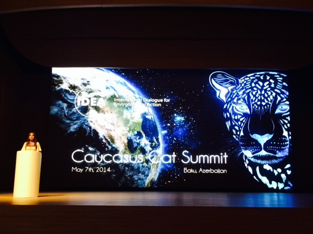 Leyla Aliyeva opening the Caucasus Cat Summit in Baku, Azerbaijan dedicated to saving the leopards. Photo: green stilettos.