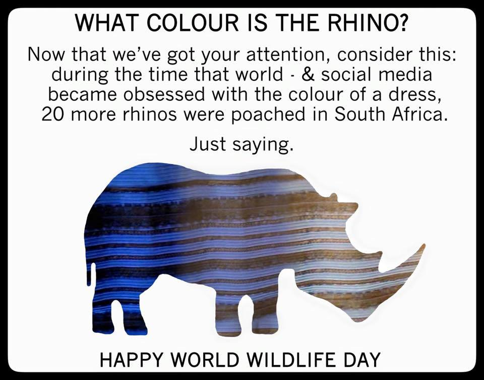 rhino_dress
